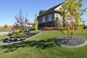 A sloped backyard with curb appeal surrounding trees & garden beds.