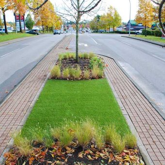 Artificial grass or synthetic lawn. Curb appeal or concrete curbing. Road median.