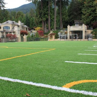 Astro turf or artificial grass. A football or soccer field with goal posts.