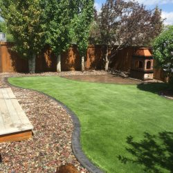 Dark colored concrete curb appeal separating mulch from a green lawn
