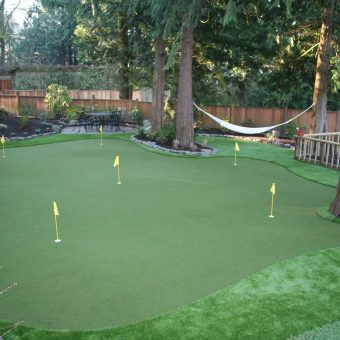Exquisite backyard landscape in Calgary. Artificial Grass putting green