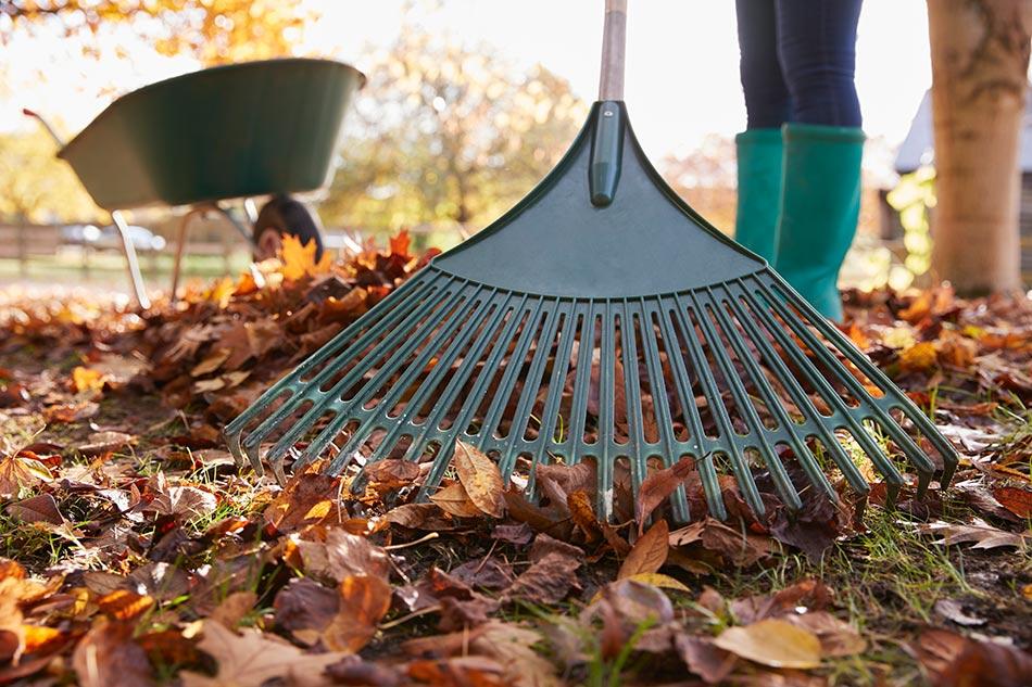 Fall yard maintenance checklist