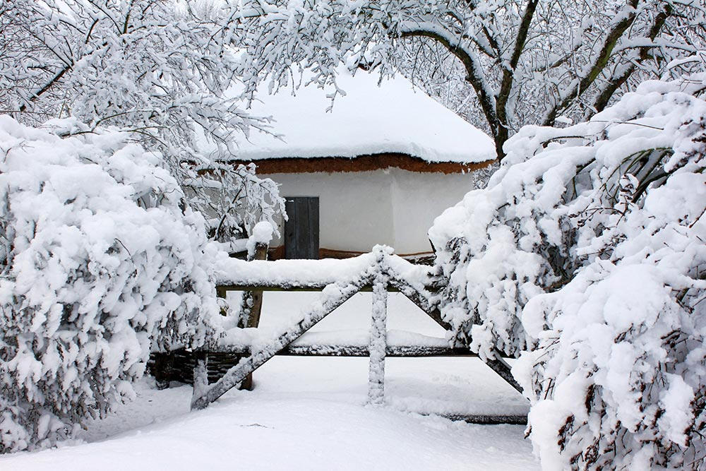 Yard covered in snow